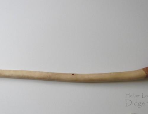 Didgeridoo (HL-06)