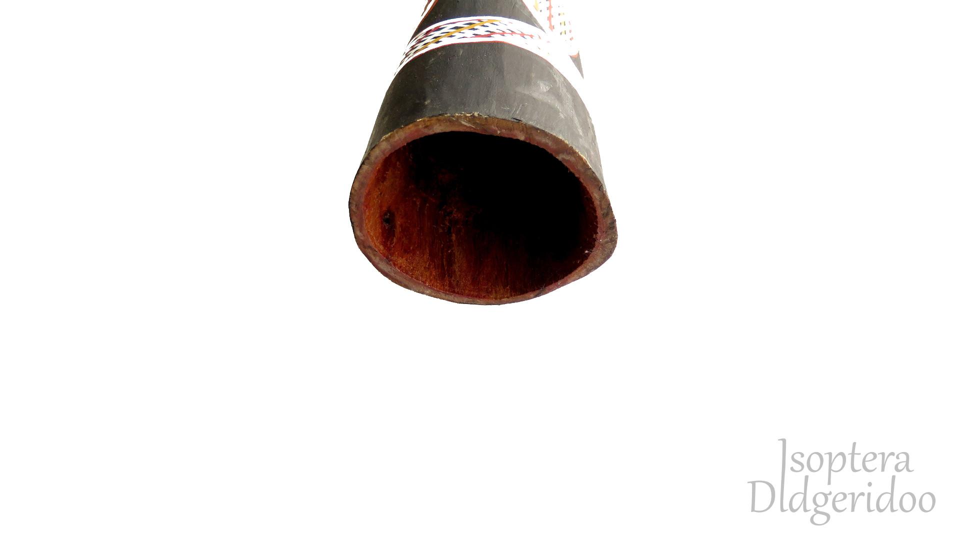 Dhapa Ganambarr Yidaki tölcsér IDY-15B