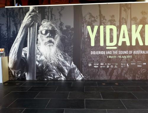 'A nevezetes Yidaki (és nem, ez nem a 'didge'!)'