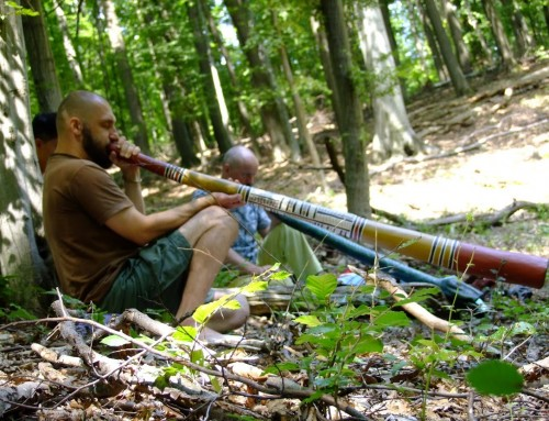 Kezdő Didgeridoo Workshop